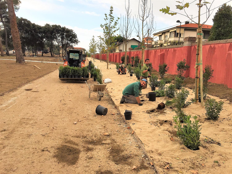 realizzazione verde pubblico 1
