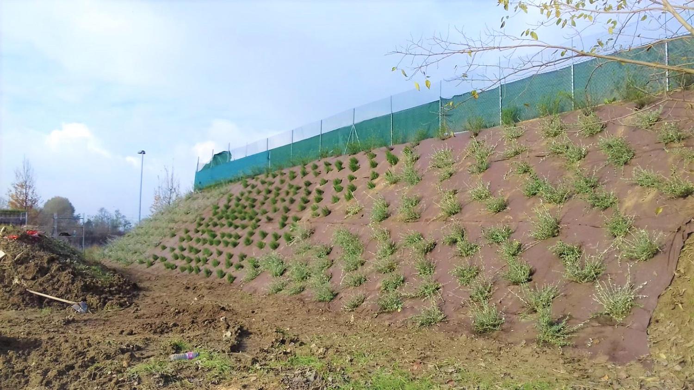 realizzazione verde pubblico 2
