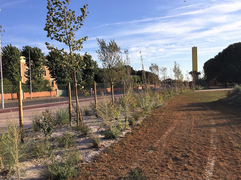 realizzazione verde pubblico 5